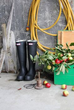 This is fall - hunter boots and apples <3 #høst #fall #autumn