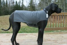 I need this for my Great Danes to keep them warm in winter!!! And it's affordable too!!!!!