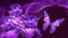 Wallpapers Purple Love Butterfly Beauty X 1920x1080 | #545551 ...