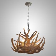 Hampton bay 5 light natural antler hanging chandelier mommys antler featured chandelier with 6 lights 340aud aloadofball Gallery