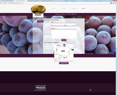 Site Criado pela DF2 - Site Vinhos Rossato