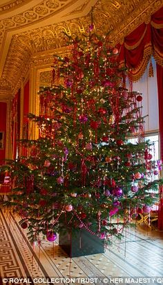 Christmas tree Locations inside Windsor Castle include St George's Hall, the Crimson Drawing Room, and in the China Corridor