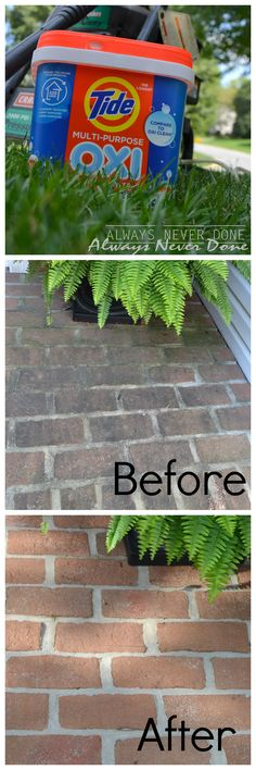 Cleaning Algea off your brick pathway with Tide Oxi (part of the Tide OXI Challenge)
