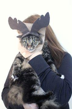 The Incredible Cat-Moose Costume DIY #MichaelsMakers