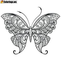 15 Best Butterfly Coloring Pages Images Butterfly Coloring Page