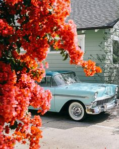 Im fairly certain that this is the car that I photographed in Balboa Park about a month ago. And now I know where to find it all the time. Does that make me a stalker?? Dont answer that. . . . . #drivetastefully #classiccars #flowersofinstagram #mytinyatlas #theprettycities #verilymoment #flashesofdelight #visitsd #sandiego #traveldeeper #dscolor #petitejoys