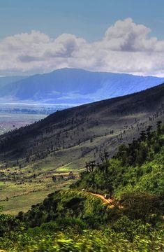 Ngorongoro Crater. Tanzaniahttp://africatriedandtested.com/destinations/ngorongoro-crater/