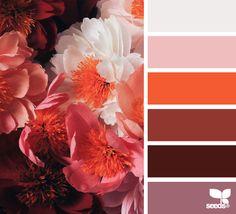 papered petals #color #palette #designseeds #seeds #seedscolor