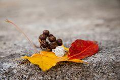 Lauren Winstead Photography - autumn engagement ring shot Fall Engagement, Engagement Rings, Engagement Ring Photography, Ring Shots, Engagements, Stud Earrings, Autumn, Jewelry, Enagement Rings