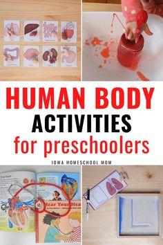 Human Body Activities for Preschoolers - Iowa Homeschool Mom