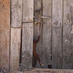 Ávila escondida... Como en casa en ningún sitio by katiuskaroja