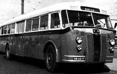 Zuidooster bus