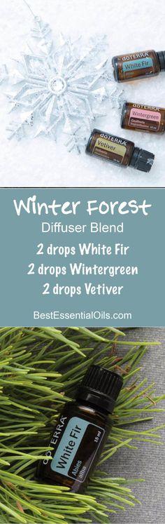 Winter Forest doTERRA Diffuser Blend