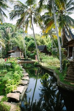 For many, Bali is the ultimate vacation destination—the way people speak of the Indonesian island makes it soundnothing short of sublime. Affirming that n