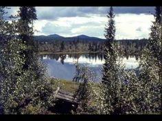Vesa-Matti Loiri - Lapin kesä
