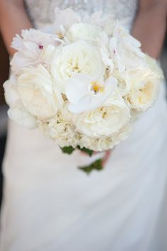 White Orchid and Garden Rose Bridal Bouquet | Jennifer Lindberg Weddings https://www.theknot.com/marketplace/jennifer-lindberg-weddings-austin-tx-211072 | Westbank Flower Market https://www.theknot.com/marketplace/westbank-flower-market-west-lake-hills-tx-323485
