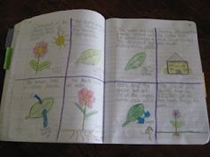 Science Notebooking: lots of ideas and examples