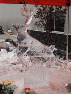 Live hand carved ice demo of a reindeer