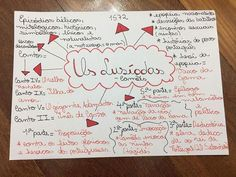 Reasons to Learn Brazilian Portuguese Mind Maps, Mental Map, Learn Brazilian Portuguese, Portuguese Lessons, Study Inspiration, Studyblr, Study Notes, Planner Organization, School Hacks