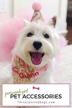 02d2beb97538 Personalized dog bandanas for your fabulous furbaby by Three Spoiled Dogs.  We are a dog