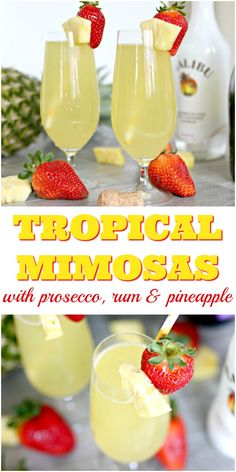 Mimosa Discover How to Make Tropical Prosecco Mimosas In my book you can keep your diamonds.mimosas are a girls best friend! These Tropical Prosecco Mimosas take mimosa drinking to the next level with the taste of coconut and pineapple added to the mix! Malibu Rum Drinks, Prosecco Cocktails, Cocktail Drinks, Coconut Rum Drinks, Sangria, Cocktail Recipes, Champagne Drinks, Brunch Drinks, Fun Drinks