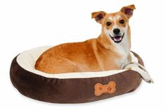 Aspen Pet Oval Cuddler Pet Bed, 20-Inch by 16-Inch, Chocolate Brown   Check it out-->  http://mypets.us/product/aspen-pet-oval-cuddler-pet-bed-20-inch-by-16-inch-chocolate-brown/  #pet #food #bed #supplies