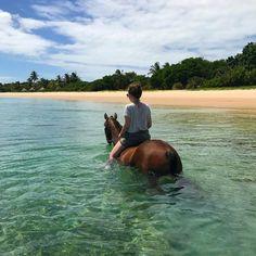 Floating around  #equestrian #horse #equestrianperformance