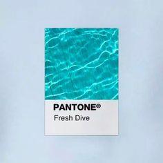 PANTONE Colors Get R