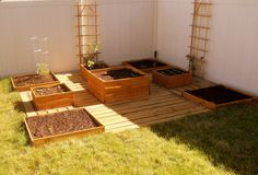 DIY Box Garden with wooden pathways and pebbles.