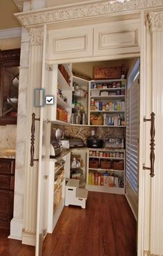 Can we just say Dream Kitchen Pantry ! counter inside pantry to store appliances Kitchen Pantry, Kitchen Storage, Kitchen Ideas, Pantry Storage, Pantry Organization, Pantry Room, Organized Pantry, Room Kitchen, Food Storage