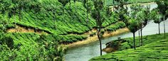 Spend your Best time in Kerala with reasonable holiday packages on Fli-ghts.