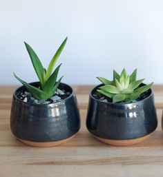 **Each color has a separate listing. This listing is for a Black Planter…