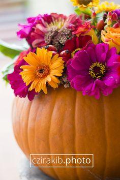 Őszi dekoráció | Autumn decoration www.czirakib.photo