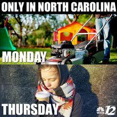 North Carolina, Baseball Cards, Sports, Hs Sports, Sport