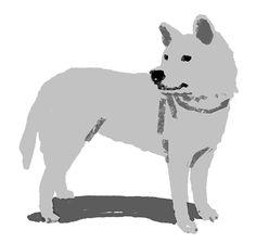 Gon the Sherpa dog of Mt. Koyasan on Behance