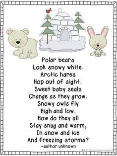Arctic Animals Poems