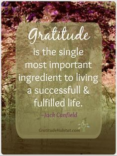 Gratitude-the most important ingredient to a successful life. Read more....