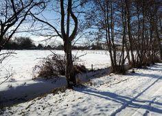 Terschelling in de winter; Winters Terschelling.