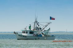 Shrimpers in the Gulf