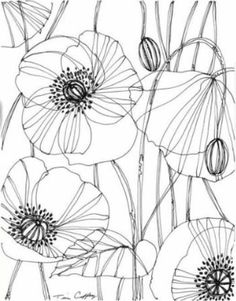 pencil drawings - Drawing Flowers & Mandala in Ink Drawing On Demand Sgraffito, Flower Line Drawings, Art Drawings, Flower Pattern Drawing, Pencil Drawings, Poppy Drawing, Plant Drawing, Flower Doodles, Silk Painting