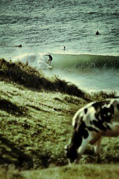 //\\ Surfing Cantabria, Spain