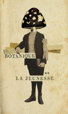 """Botanique de la jeunesse,Digital collage. """"Omelette Poétique"""" collection, work in progress. Gaëlle Faure."""