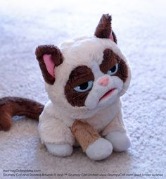 Grumpy Cat hand puppet  http://www.hashtagcollectibles.com/products/grumpy-cat-puppet