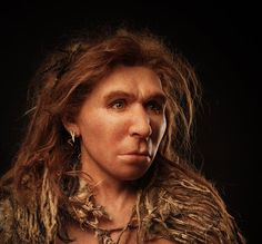 A reconstruction of a Neanderthal woman from the Saint Césaire site in France.