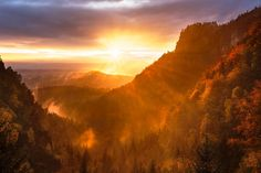 Sun beam on beautiful forest mountain scene Stock Photo Dji Spark, Spirit Of Fear, Forest Mountain, Mountain View, Fear Of The Lord, Beautiful Forest, Wallpaper Pictures, Morning Light, Daily Devotional