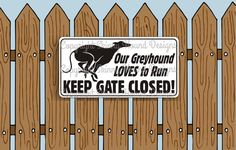 Our Greyhound LOVES to Run KEEP GATE CLOSED! Image