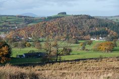 We took a short and easy trek across Askham Fell down to Roe Head Lane, parking in Helton first. Home to birds of prey, stone circles and lots more. Falling Down, Lake District, Trek, Hiking, Mountains, Kids, Walks, Young Children, Boys