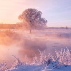 Photographer Alex Ugalnikov Captures Magnificent Beauty of Radiant Winter Mornings in Belarus - My Modern Met Landscape Photography, Nature Photography, Cool Winter, Epic Photos, Winter Magic, Winter Photos, Winter Landscape, Beautiful Lights, Science And Nature