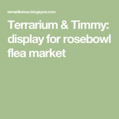 Terrarium & Timmy: display for rosebowl flea market