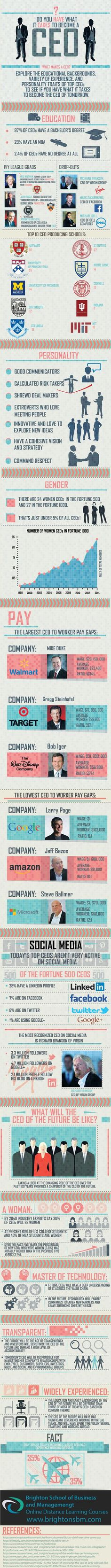 Are you CEO material? See CEO characteristics. Do-you-have-what-it-takes-to-be-a-CEO-BSBM-Infographic